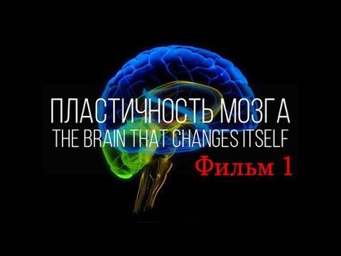 Мозг изменяющий себя сам. Нейропластичность Мозга. Фильм 1