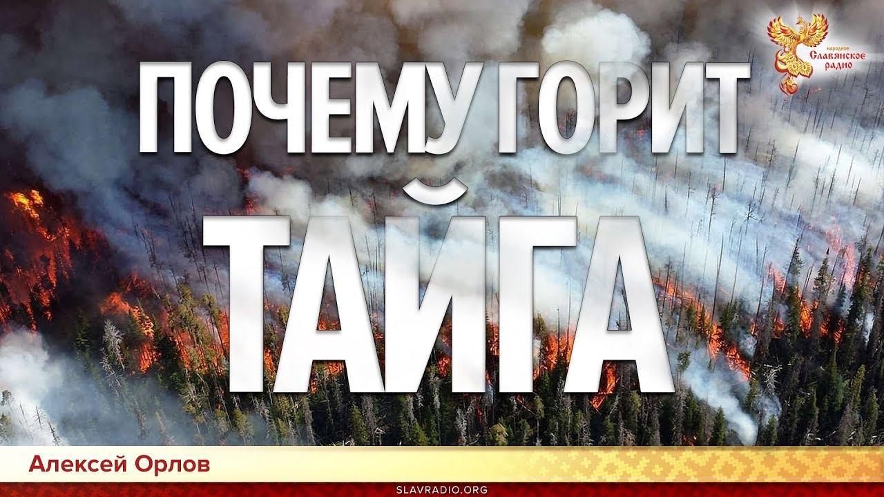 Почему горит Сибирь