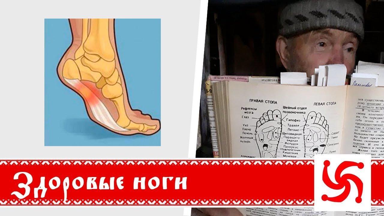 Как заботиться о здоровье ног? Борис Володарский