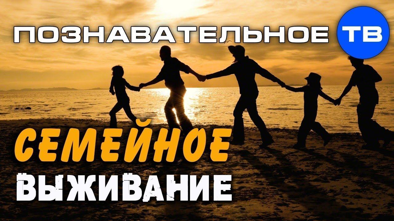 Русское семейное выживание. Почему погибает семья? Андрей Иванов