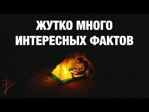 Скрытая история, культура, традиции наших предков. Знания славян. Школа развития человека