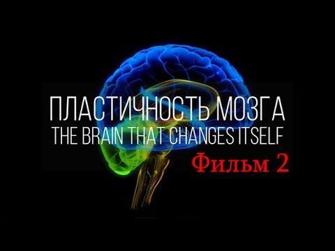 Мозг изменяющий себя сам. Нейропластичность Мозга. Фильм 2