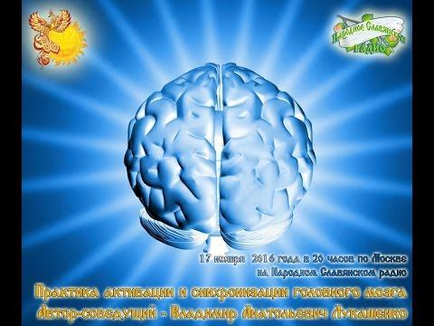 Практика активации и синхронизации головного мозга. Владимир Лукашенко