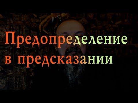 Предопределение в предсказании. Олег Боровик