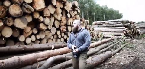 Возле резиденции Путина вырубили заповедный лес