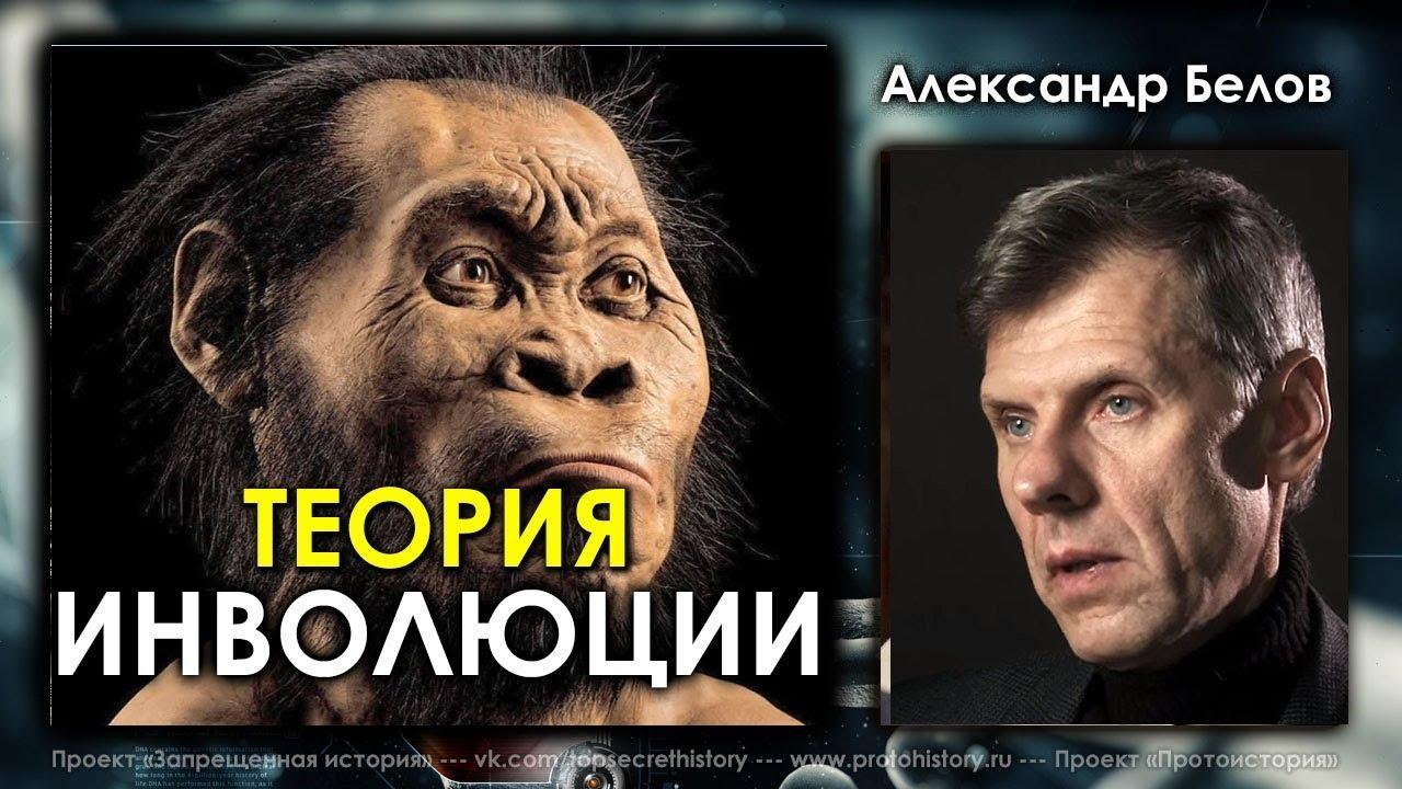 Теория инволюции. Александр Белов