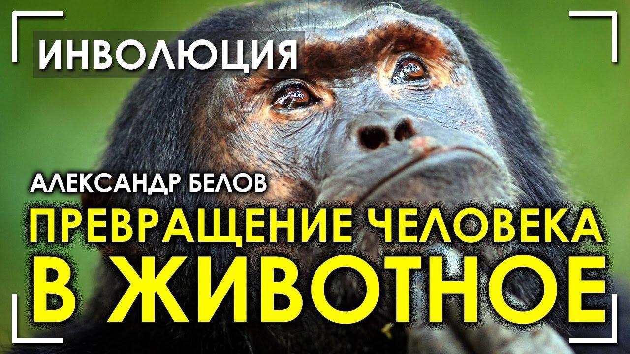 Превращение человека в животных
