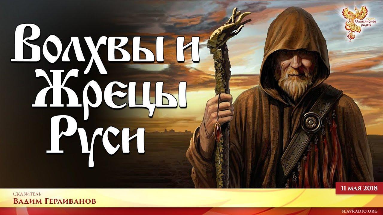 Где найти и кто такие настоящие волхвы и жрецы?