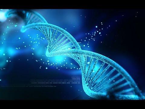 Человеческая речь влияет на ДНК